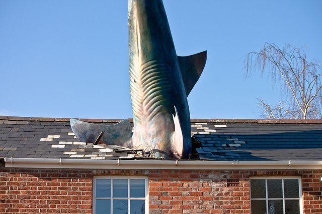 Headington Shark İngiltere